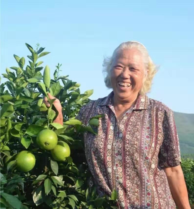 76岁仍在专研自然农法 要种出世界特别好吃的橙子